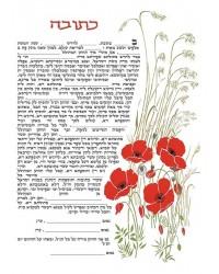 Anemones reddish